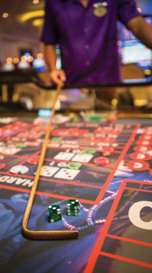 Casino Cruise Junkets